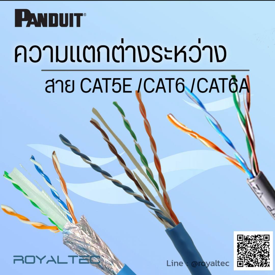 ความแตกต่างระหว่างสายCAT5E CAT6 CAT6A